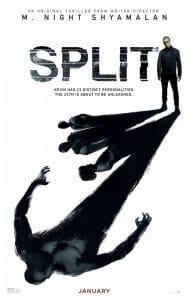 Split OneSheet