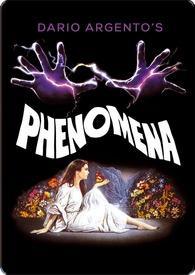 phenomena334
