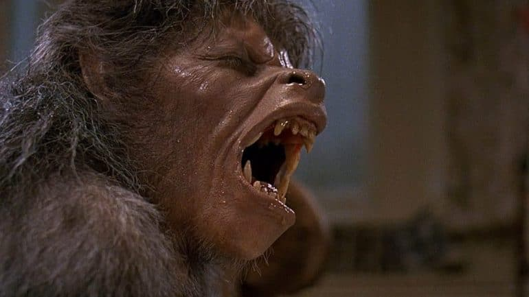 An American Werewolf in London Wolf0 e1513037818665