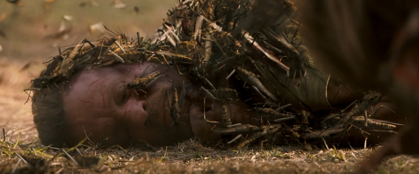 reaping the 2007 movie pic3
