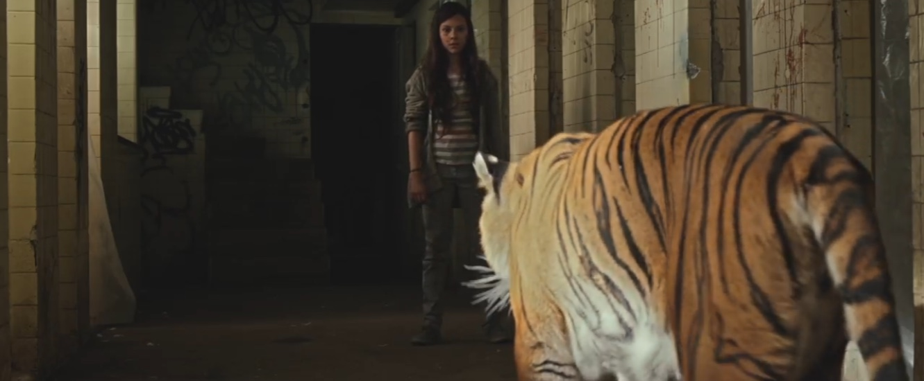 Tigers Are Not Afraid image film