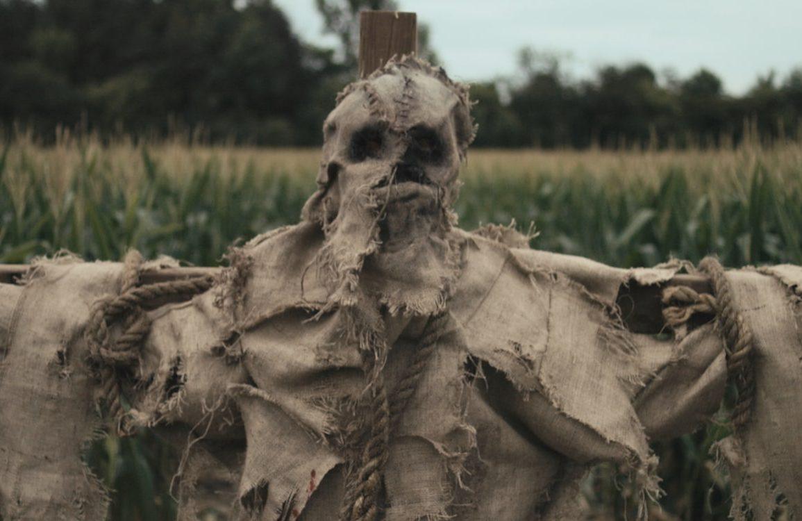 Scarecrows Still 1