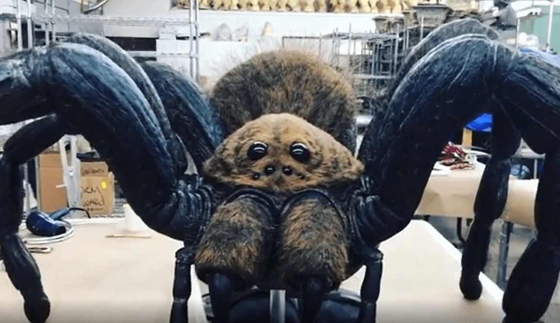 creepshow spider