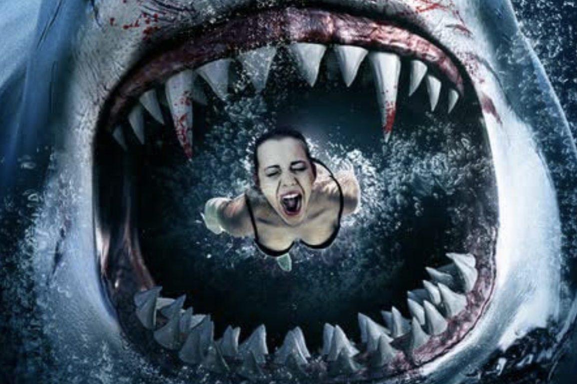 Sharkula movie film comedy horror 2021 Mark Polonia poster 1 e1616420607886